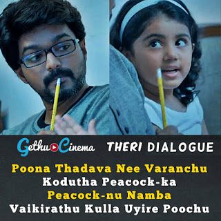 vijay birthday special theri images with dialogue gallery gethu