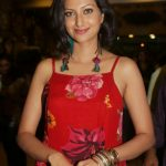 Hamsa Nandini Hot Cute Gorgeous Beautiful Images Pictures Photos HD Photo shoot wallpapers saree gallery
