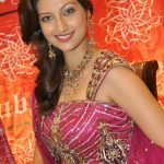 Hamsa Nandini Hot Cute Gorgeous Beautiful Images Pictures Photos HD Photo shoot wallpapers saree gallery 34