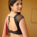 shraddha-das-in-backless-saree-blouse-saree-782a6f6ad104b40dbf586396ccf4c995-large-483463