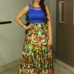 Manjusha-Photos-At-Bengal-Tiger-Movie-Success-Meet-01