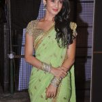 Sonal Chauhan (7)