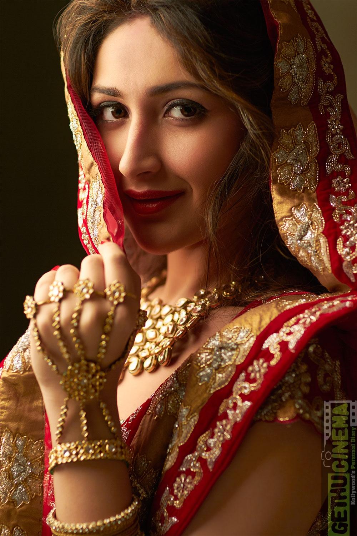 Sayyeshaa Aka Sayesha Saigal Latest Cute HD Photo Shoot