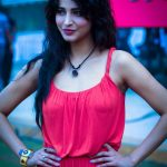 shruti-haasan-ccl-4-cricket-match_139393044750