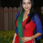 Actress Pooja Sri  (20)
