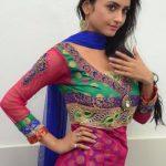 Actress Pooja Sri  (27)