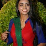 Actress Pooja Sri  (9)