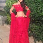 Ameesha Patel (28)