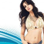 Ameesha Patel (32)