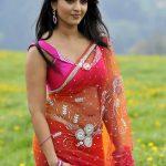 Anushka Shetty (10)