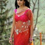 Anushka Shetty (12)