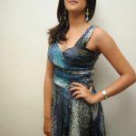 Deeksha Seth  (14)