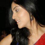 Dhanya Balakrishna (4)