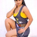 Madhavi Latha (8)