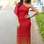 Nikki Galrani (16)