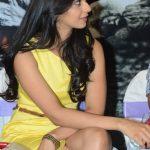 Rakul Preet Singh (1)