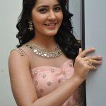 Rashi Khanna  (7)
