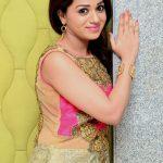 Reshma-Rathode-Sizzling-pics-034