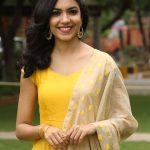 Ritu Varma (13)