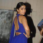 Shriya Saran  (17)