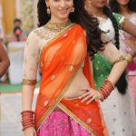 Tamanna-Novel-show-In-Half-Saree-23