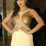 Veena Malik (1)