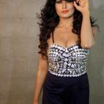 Veena Malik (11)