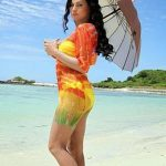 Veena Malik (17)