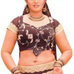 Vindhya 3