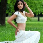 ileana new hot in devudu chesina manusulu photos stills gallery