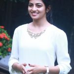 Actress Anandhi HD Gallery (14)