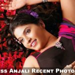 Actress Anjali (1)
