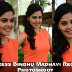 Actress Bindhu Madhavi Recent Photoshoot  (1)