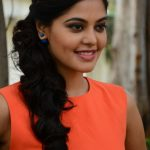 Actress Bindhu Madhavi Recent Photoshoot  (10)