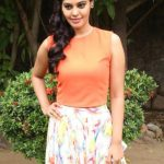 Actress Bindhu Madhavi Recent Photoshoot  (12)