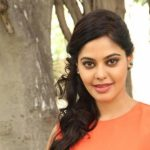 Actress Bindhu Madhavi Recent Photoshoot  (13)