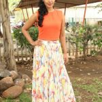 Actress Bindhu Madhavi Recent Photoshoot  (2)