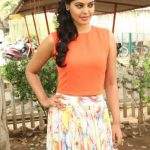 Actress Bindhu Madhavi Recent Photoshoot  (3)