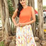Actress Bindhu Madhavi Recent Photoshoot  (4)