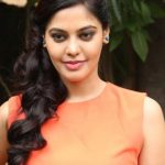 Actress Bindhu Madhavi Recent Photoshoot  (6)