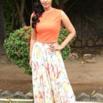 Actress Bindhu Madhavi Recent Photoshoot  (7)
