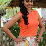 Actress Bindhu Madhavi Recent Photoshoot  (9)