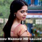 Bindhu Madhavi HD gallery (1)