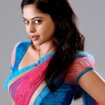 Bindhu Madhavi HD gallery (2)