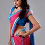 Bindhu Madhavi HD gallery (5)