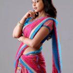 Bindhu Madhavi HD gallery (6)