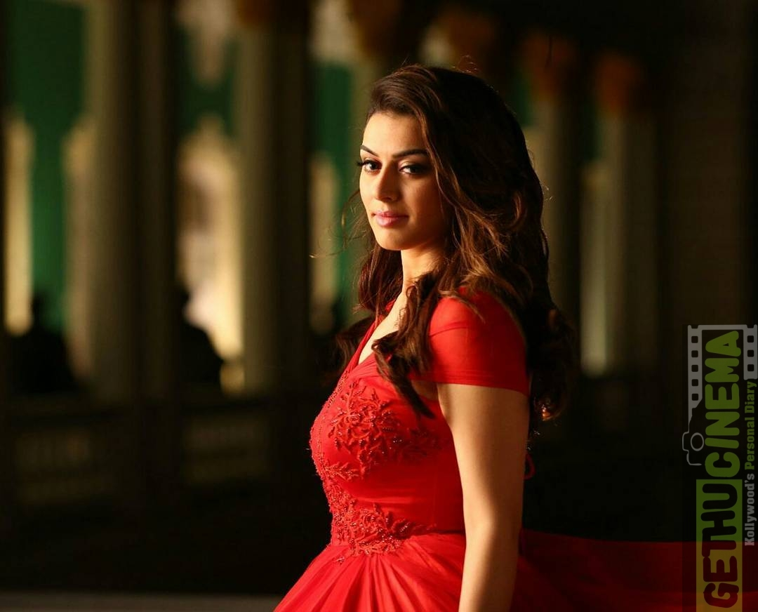 actress hansika motwani latest hd photos | unseen gallery - gethu cinema