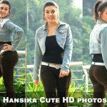 Hansika Cute HD photos (1)