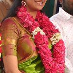 Keerthi Suresh 2017 saree Pictures (3)