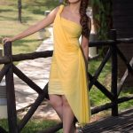 Lakshmi Rai (8)